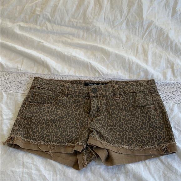 Celebrity Pink Pants - Cheetah Shorts